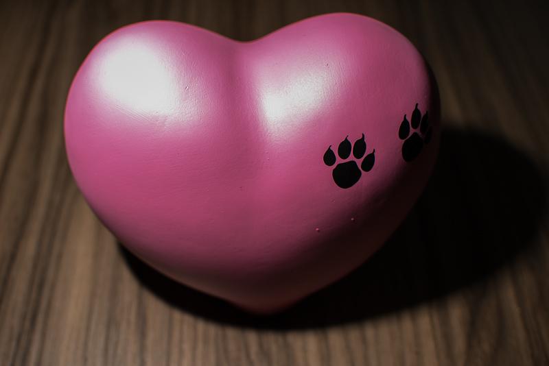 URNA CORAÇÃO ROSA Excelente urna para animais de pequeno e médio porte. Disponível na cor rosa ela é um delicado objeto de decoração para acondicionar as cinzas do seu mascote demonstrando todo o amor que foi-lhe dado.